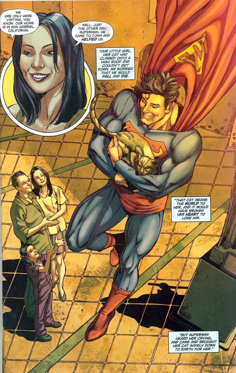 Superman713cat